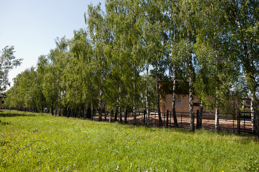 Участок в Крекшино