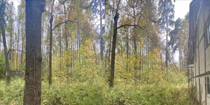 Участок в Жуковка